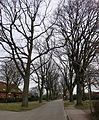 Dorfkern Lemsahl (Hamburg-Lemsahl-Mellingstedt)4.JPG