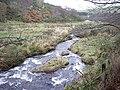 Downstream Ness Bogie - geograph.org.uk - 1576932.jpg