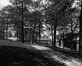 """Driveway and grounds at """"Ravenscrag"""" (II-143388).jpg"""