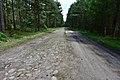 Droga pomiędzy obozami Treblinka I i Treblinka II.jpg