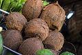 Dry Coconut001.jpg