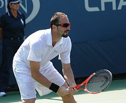 Dušan Vemić at the 2010 US Open 02.jpg