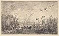 Ducks in the Marshes MET DP822394.jpg