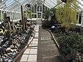 Dunedin Botanic Garden kz04.jpg