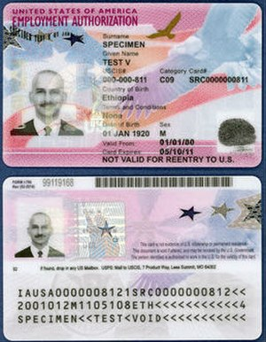 Employment authorization document - Example EAD card (2017 version)