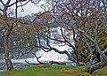 Eas Fors - geograph.org.uk - 1050139.jpg