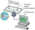 Electrophoresis experimental system.png