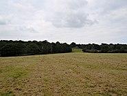 Eltham parks 4