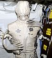 Expedition-2-phantom-torso.jpg