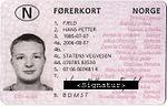 buy-italian-drivers-license