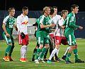 FC Liefering gegen WSG Wattens (4. November 2016) 24.jpg