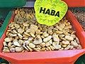 Fabales - Vicia faba - 4.jpg