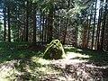 Falera Menhir Wald.JPG