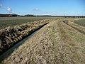 Farmland near Gate Burton (1) - geograph.org.uk - 1738315.jpg