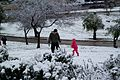 Father and daughter playing with snow at Sacher Park January 2014.jpg