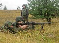 Fearless Guardian Ukraine.jpg