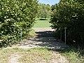 Feldweg-Brücke über die Ergolz, Rothenfluh BL 20180926-jag9889.jpg