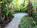 Fervedouro - Parque Estadual do Jalapão.JPG