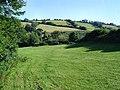 Field near Beenleigh - Harbertonford - geograph.org.uk - 35771.jpg
