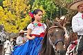Fiestas Patrias Parade, South Park, Seattle, 2015 - 259 - the horses (20973198024).jpg