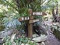 Fingerpost on trail of Mount Awa and Mount Katsuu 2018.JPG