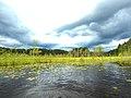 Five lakes trail of Kenozersky national Park.jpg