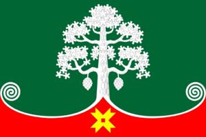 Segezha - Image: Flag of Segezha (Karelia)