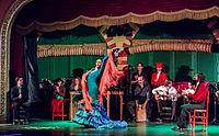 Flamenco en el Palacio Andaluz, Sevilla, España, 2015-12-06, DD 19.JPG