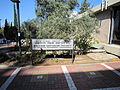 Flickr - Technion - Israel Istitute of Technology - IMG 1015.jpg