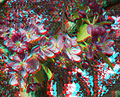 Flickr - jimf0390 - JimF 04-21-10-0003a crab apple blossoms at WITCC.jpg