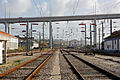 Flickr - nmorao - PK 215, Linha do Oeste, 2009.01.24.jpg