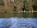 Fonthill Lake - geograph.org.uk - 1702290.jpg