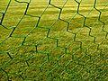 Football goal net.jpg