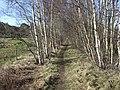 Footpath along line of former Deeside railway. - geograph.org.uk - 363073.jpg