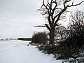 Footpath in the snow - geograph.org.uk - 1656720.jpg