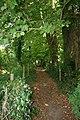 Footpath to Goring - geograph.org.uk - 1449748.jpg