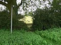 Footpath to Laughton - geograph.org.uk - 545396.jpg