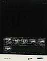 Ford B1740 NLGRF photo contact sheet (1976-10-02)(Gerald Ford Library).jpg