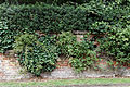 Fore Street wall southeast from St Etheldredas Hatfield House Hertfordshire England.jpg