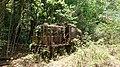 Former NSWGR 79 class locomotive abandoned on Christmas Island.jpg
