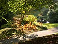 Fountain, Dartington Hall Gardens - geograph.org.uk - 1010931.jpg