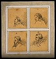 Four physiognomies expressing the propensity to command. Dra Wellcome V0009192.jpg