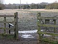 Freemen's Meadow - geograph.org.uk - 1737415.jpg