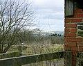 Furze Knoll hiding in a tree - geograph.org.uk - 1185427.jpg