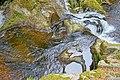 Görwihl Dachsberg Krai-Woog-Gumpen Wasserfall von oben.jpg