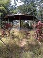 Garden At Forest Office Toranmal.jpg