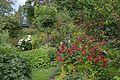 Garden in Finland 04.jpg