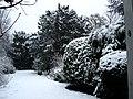 Garden in snow at Rotterdamseweg Delft, winter 2006.JPG