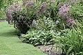 Garden path NBG LR.jpg