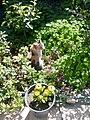 Gardens in Baghdad 7.jpg